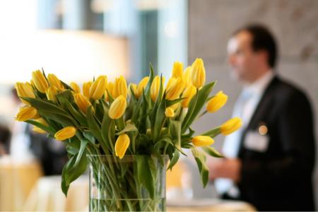 lobby flowers, tulips